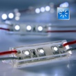 LED module blue 3 x SMD-LED, 49mm 12V, Item no. 57401