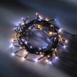 LED Ricelight twinkle warmweiß/kaltweiß, ArtNr. 31252