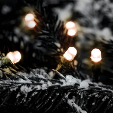 LED fairy light (rope)  warmwhite, 41m (200 LEDs) 41m (200 LEDs)