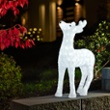 LED Acrylic Reindeer, 176 white LEDs, Item no. 97080