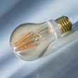 Philips Classic LEDbulb 7.5-48W E27 820 A60 gold FIL DIM, Item no. 74919